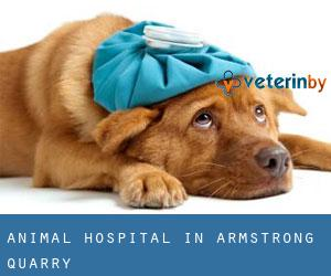 Animal Hospital in Armstrong Quarry