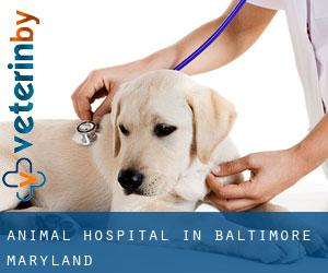 Animal Hospital in Baltimore (Maryland)