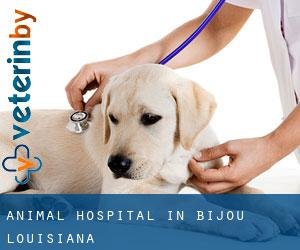 Animal Hospital in Bijou (Louisiana)