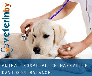 Animal Hospital in Nashville-Davidson (balance)