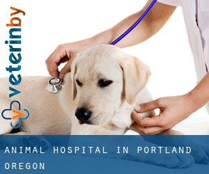Animal Hospital in Portland (Oregon)