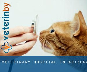 Veterinary Hospital in Arizona