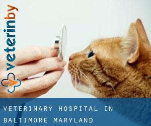 Veterinary Hospital in Baltimore (Maryland)