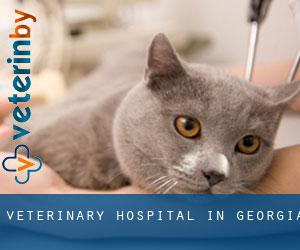Veterinary Hospital in Georgia