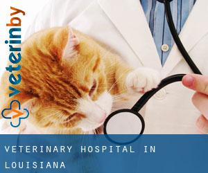 Veterinary Hospital in Louisiana