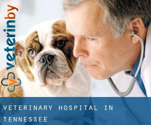 Veterinary Hospital in Tennessee
