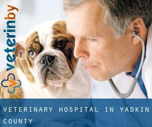 Veterinary Hospital in Yadkin County - Pet Clinics in North Carolina