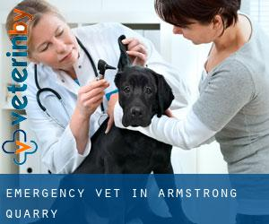 Emergency Vet in Armstrong Quarry