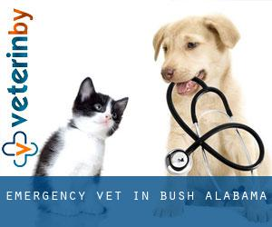 Emergency Vet in Bush (Alabama)