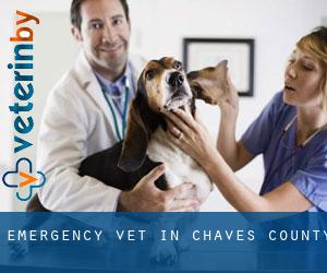 Emergency Vet in Chaves County