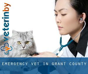 Emergency Vet in Grant County
