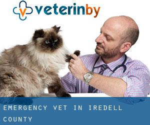 Emergency Vet in Iredell County