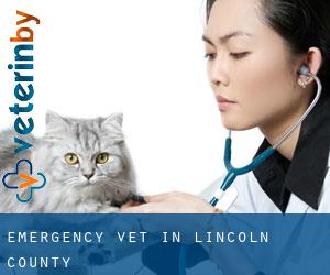 Emergency Vet in Lincoln County