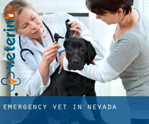Emergency Vet in Nevada