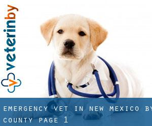 Emergency Vet in New Mexico by County - page 1
