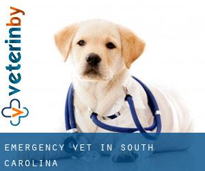 Emergency Vet in South Carolina