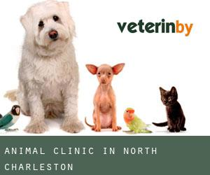 Animal Clinic in North Charleston