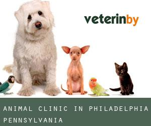 Animal Clinic in Philadelphia (Pennsylvania)
