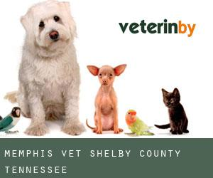 Memphis Vet (Shelby County, Tennessee)